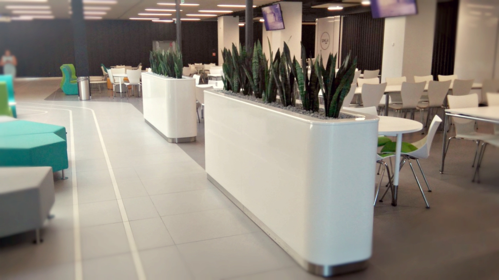 Office Plant Blog_zielony hol Buma Square